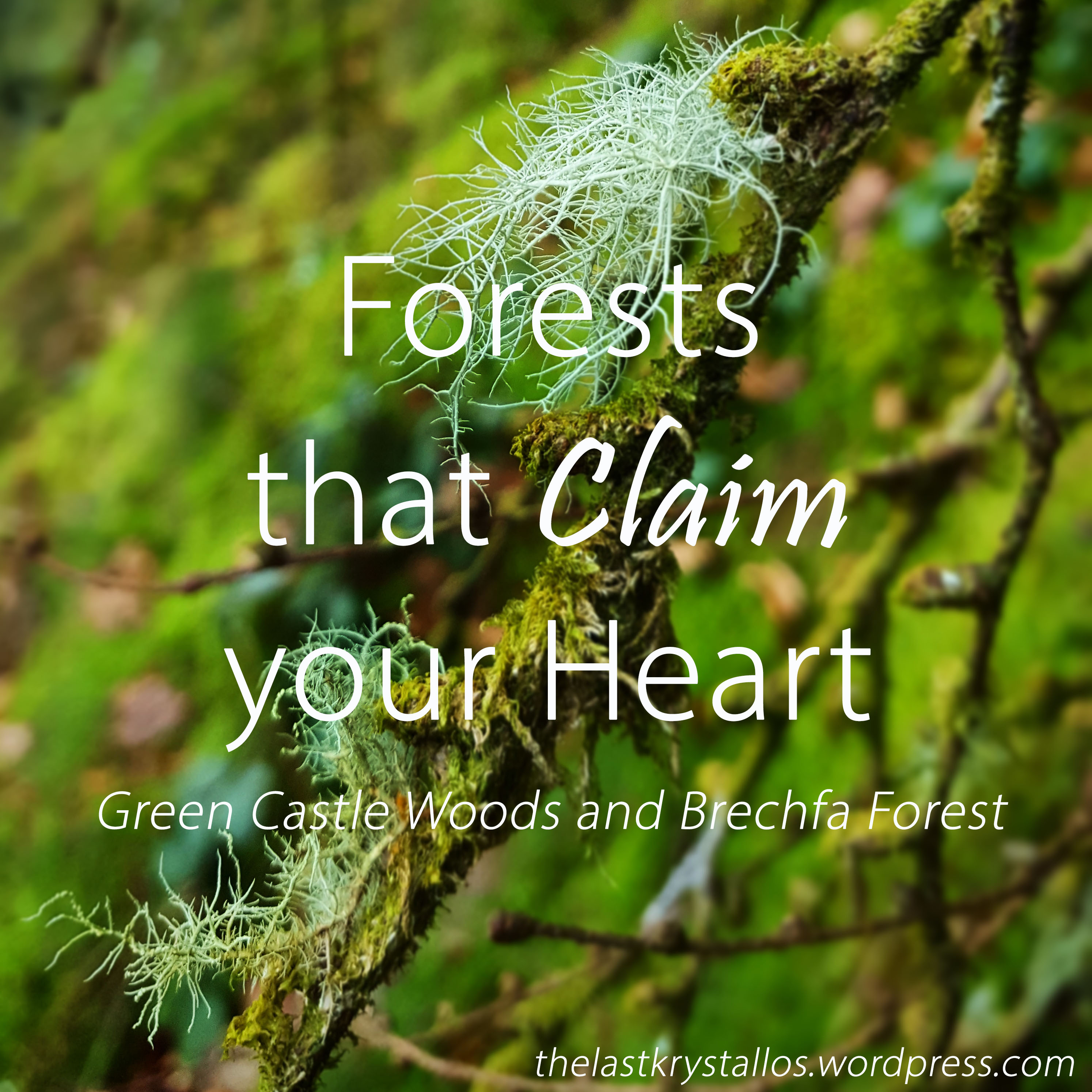 Forests that claim your Heart - The Last Krystallos