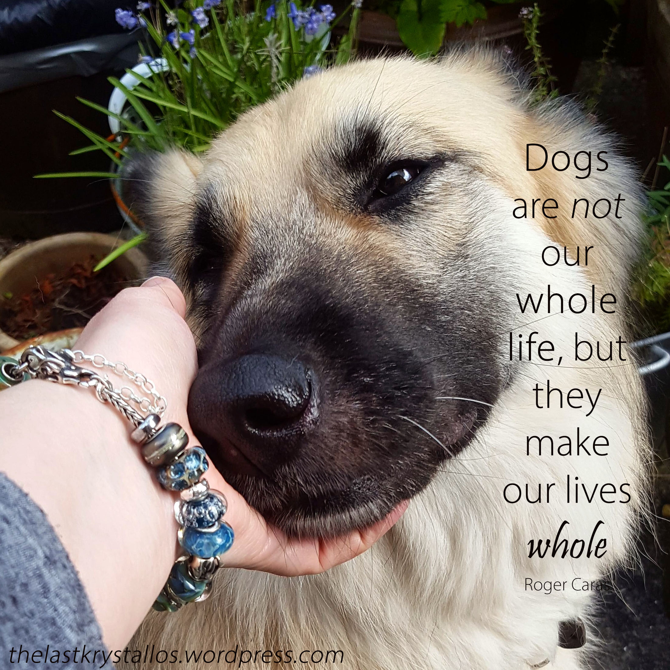 Dogs are not our whole life, but they make our lives whole - Roger Caras - The Last Krystallos