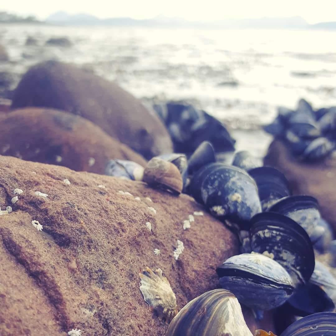 Applecross Bay - The Last Krystallos