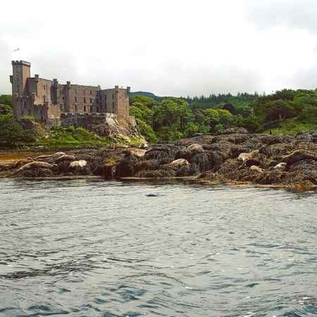 Dunvegan Castle and Seal Colony - The Last Krystallos