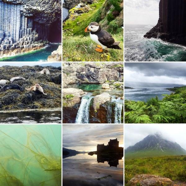 Fingal's Cave, puffins, Dunvegan seals, fairy pools, Kylerhea, Eilean Donan, Buachaille Etive Mor - TLK