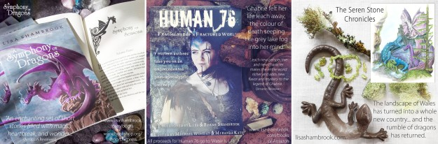 A Symphony of Dragons, Human 76, The Seren Stone Chronicles AD 2020